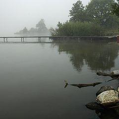"""фото """"туман на озере"""""""