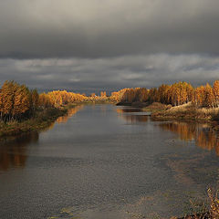 """фото """"Уж осень тучи надвигает"""""""