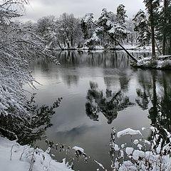 """photo """"pre-winter"""""""