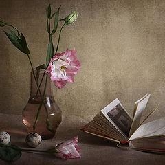 """фото """"Этюд с розовым цветком"""""""