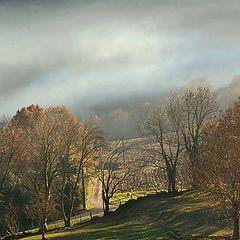 """фото """"automne"""""""
