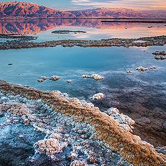 """photo """"Dead sea ..."""""""