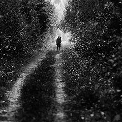 """фото """"Light Walker"""""""