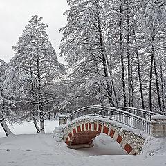 """фото """"Из серии """"Зима в Кузьминках"""""""""""