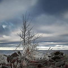 "фото ""Ледяное царство"""