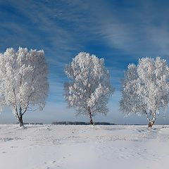 """фото """"Три красавицы в зимнем наряде))"""""""