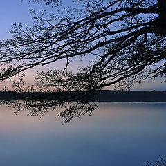 "фотоальбом ""Landscape 2014"""