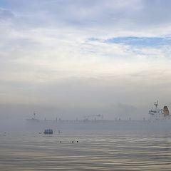 "photo ""through the fog"""