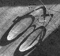 """photo """"Очки-велосипед"""""""