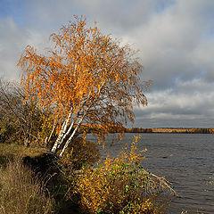 """фото """"Последняя осень"""""""