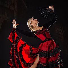 """фото """"Фламенко"""""""