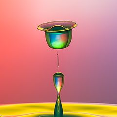 "photo ""liquid tulip"""