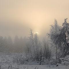 """фото """"утро морозное"""""""