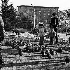 """фото """"Дети и голуби"""""""