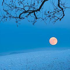 "фото ""The moon"""