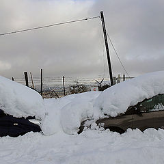 "фото ""Ближневосточная зима..."""