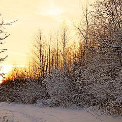"""фото """"Зимний вечер"""""""