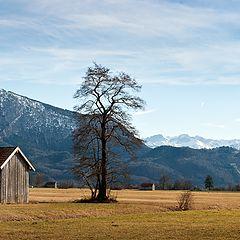 "фото ""Bavaria"""
