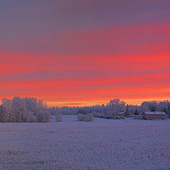 "photo ""Winter pink sunset"""