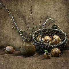 "фото ""Ранневесенний натюрморт"""