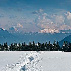 """photo """"Snow path"""""""