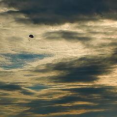 """фото """"Полет на закате."""""""