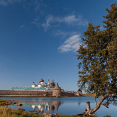 "photo ""On Solovki good weather"""