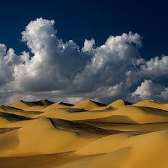 """photo """"Dunes 27"""""""