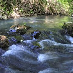 """photo """"... pure water of Jordan..."""""""