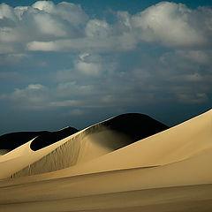 """photo """"Dunes 28"""""""