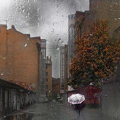 "фото ""Музыка дождя..."""