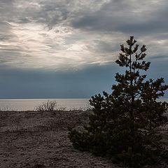 """фото """"Белое сияние над морем Белым"""""""