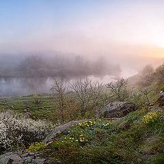 """фото """"Апрельское утро. Кальмиус"""""""