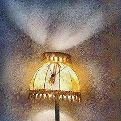"photo ""lamp"""