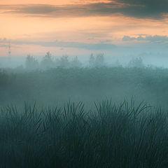 """фото """"Ночь прошла, настал рассвет..."""""""