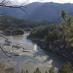 "фото ""река Катунь"""
