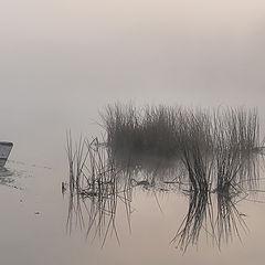 "photo ""fog/"""