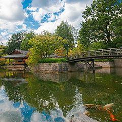 """photo """"Japanse tuin Hasselt"""""""