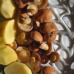 "фото ""Жарю грибы с картошечкой"""