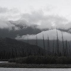 """фото """"cloudy"""""""