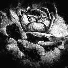 "photo ""Impressionism of a Rose"""