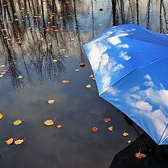 """фото """"Последние листья"""""""