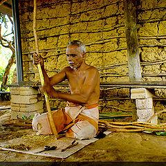 "photo ""Cinnamon industry in sri lanka"""