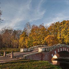 """photo """"Kuz'minki. Humpbacked bridge"""""""