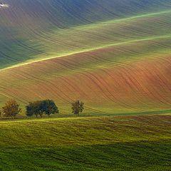 """фото """"Краски осени в Южной Моравии"""""""