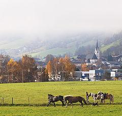 """photo """"Alps. Fog"""""""