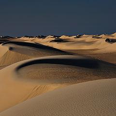 """photo """"Dunes 39"""""""