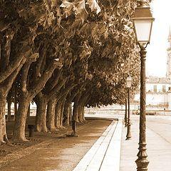 "photo ""park of Montpellier, France"""