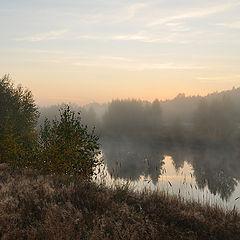 "фото ""Дыхание реки"""