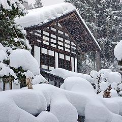 """фото """"Дом засыпанный снегом."""""""